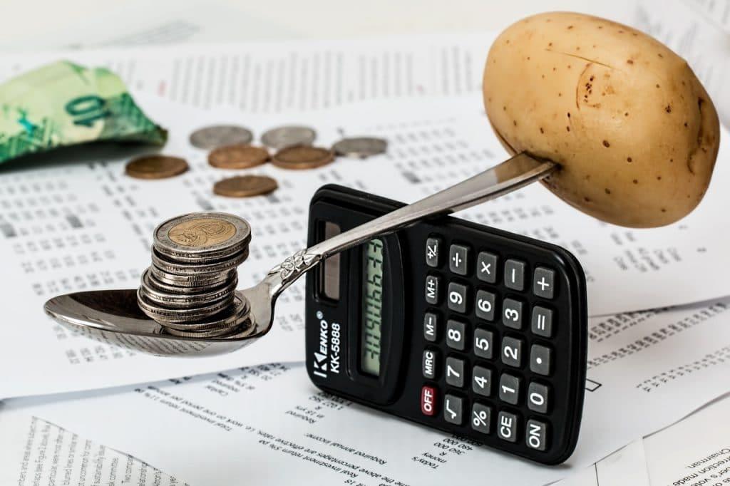 La détermination du revenu net et du revenu brut : quels sont les points importants ?