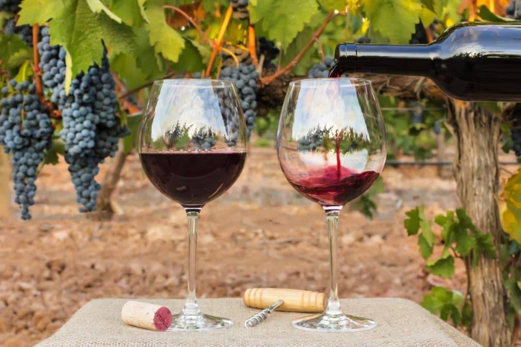 USA : un client de choix pour les professionnels du vin
