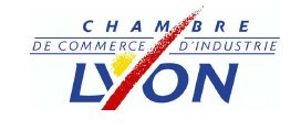Bilan de l'hôtellerie lyonnaise 2006 : le tourisme d'affaires tire son épingle du jeu