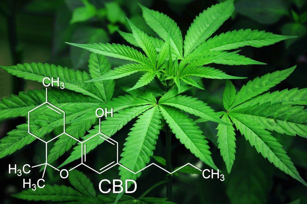 Dans le cadre d'une expérimentation : en difficulté sur l'homéopathie, Boiron se lance dans le cannabis médical