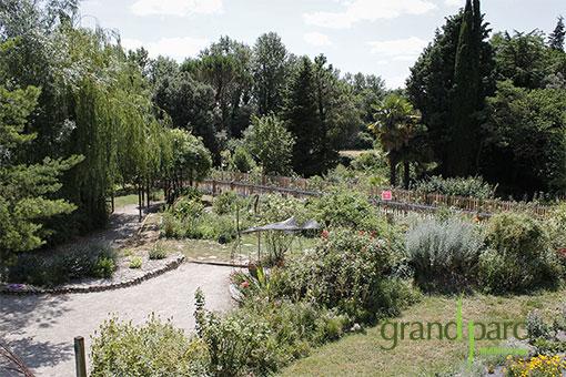 L'iloz, pour un séminaire nature au Grand Parc