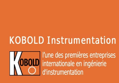 KOBOLD Instrumentation témoigne sur les raisons de son hébergement en Business Center