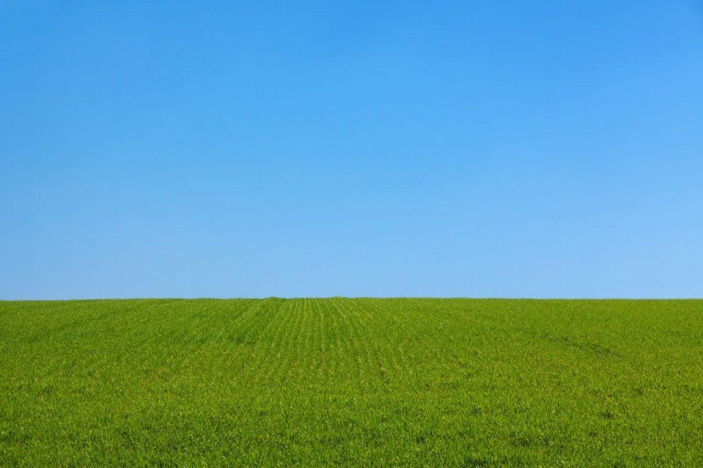 Quand l'agriculture française se met au numérique