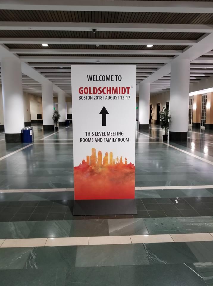Le record de participants à un congrès à Lyon pourrait bien être atteint en 2021 avec la Conférence Goldschmidt