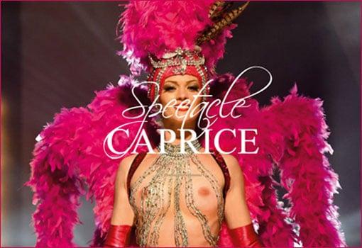 Le Voulez-Vous de Lyon : des spectacles de cabaret exceptionnels