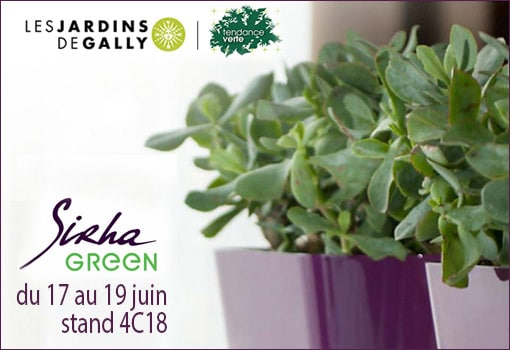 Les Jardins de Gally végétalisent le Sirha Green : #MonEntrepriseFertile !
