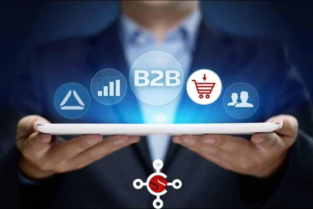 Vente en ligne : +30% de croissance avec Sana Commerce, solution de e-commerce BtoB [Demo Live Cosmo Consult]
